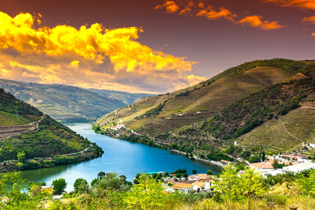 Travel,In,River,Douro,Region,In,Portugal,Among,Vineyards,And
